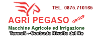 Agri Pegaso Group