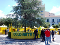 Nasce a Campobasso la prima bottega italiana stagionale di Campagna amica
