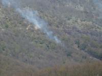 Filignano, a fuoco quattro ettari di bosco