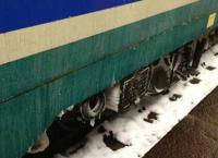 La Forestale salva il personale delle Ferrovie