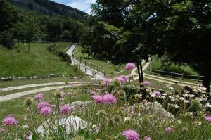 Giardino Flora Appenninica