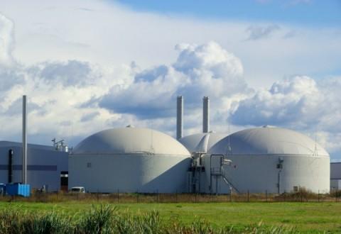 Biomasse, Micone si appella alla Regione