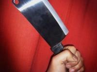 Armato di mannaia ferisce i genitori