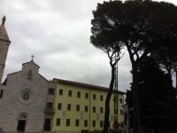 Convento, i pompieri stanno abbattendo il pino secolare