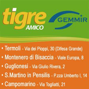 GEMMIR TIGRE 300*300