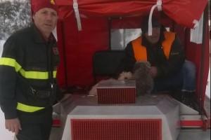 I Vigili recuperano due cani isolati nella neve