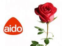Giornata della rosa, l'Aido torna in piazza