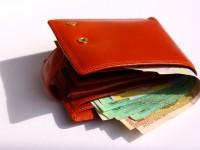 denaro nel portafoglio