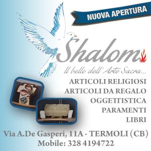 shalom 300*300