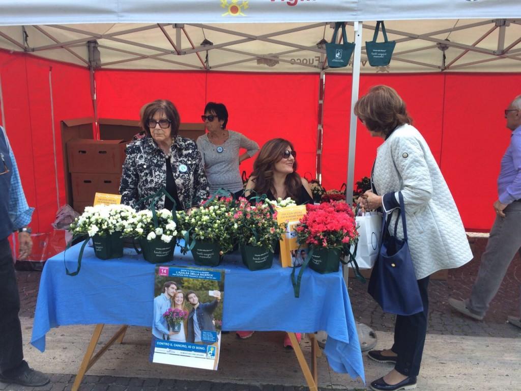 Azalea alle mamme, fondi alla ricerca  sul cancro: Airc in piazza