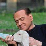Berlusconi animalista manda su tutte le furie i cacciatori: «Siamo pochi? Ma all'avanguardia rispetto ai politici»
