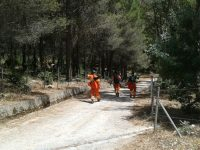 Instancabili sul fronte incendi, l'Usb chiede certezze per i forestali