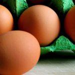 Uova al fipronil, due casi in Italia. Campioni positivi a Roma e Ancona