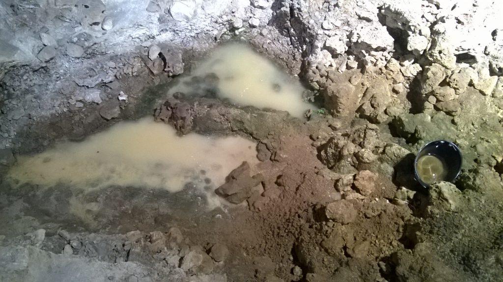 Infiltrazioni d'acqua al Paleolitico, chiesto l'intervento del ministro