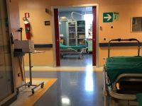Carenza di infermieri nella rete ospedaliera molisana, appello dell'Ipasvi alla politica