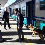 Lotta allo spaccio, blitz della Polizia alla stazione di Campobasso