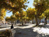 Svago e aggregazione sociale: a Bojano l'amministrazione promuove Capodanno in piazza