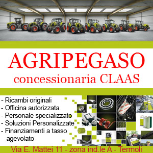 Agripegaso