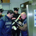 Isernia, i Carabinieri chiudono un deposito caseario per carenze igieniche