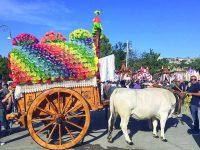 Larino, la magia dei Carri omaggia San Pardo
