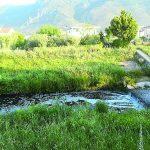 Venafro, miasmi dal Rava: indagano i Carabinieri forestali