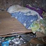 Campobasso, covo di tossicodipendenti a due passi dal centro: è allarme in via Manzo