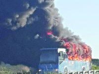 In fiamme l'autobus degli studenti sulla SS 87, tutti salvi grazie all'autista