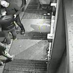 Truffatore seriale finisce nella rete della Polizia Postale molisana