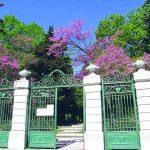 Campobasso, parco inclusivo in Villa de Capoa: c'è l'ok della Giunta