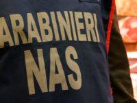Carne e insaccati avariati, il Nas di Campobasso sequestra 750 chili di prodotti