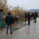 Depuratore industriale del Consorzio di Pozzilli, prelevati sedimenti nel Rava