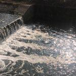 Rava, ancora schiuma nel torrente: controlli di Forestali e Arpa Molise