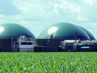 Biomasse ad Agnone, «nuove possibilità di guadagno per le aziende agricole e gli allevamenti»
