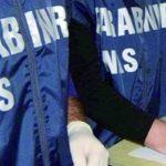 Due caseifici artigianali chiusi dai militari del Nas nel Basso Molise