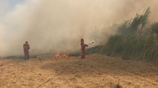 Rischio incendi, dal 15 luglio vietato accendere fuochi