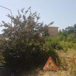 Campobasso, incuria e abbandono in via Vico: la protesta dei residenti