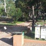 Alberi pericolosi, a Venafro ne sono stati abbattuti 17