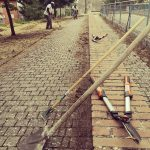 Manutenzione degli spazi verdi a Campobasso, gli ospiti degli Sprar fanno 'risorgere' il parco di via Alfieri