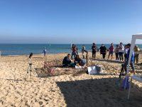 Missione compiuta a Campomarino, le tartarughine in mare