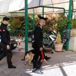 Getta la marijuana dalla finestra della scuola, studente isernino beccato dai Carabinieri