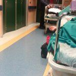 """A Campobasso pazienti fin troppo """"pazienti"""", 27 ore in Pronto soccorso"""