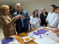 «Produciamo zafferano», vera eccellenza all'Itag San Pardo di Larino