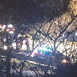 Incidente sulla statale 17, investe cinghiale e causa tamponamento a catena