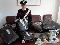 """Campomarino, """"colpo grosso"""" allo spaccio: sequestrati 21 chili di marijuana"""