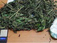 Fermato in pieno centro a Bojano con la cocaina, denunciato