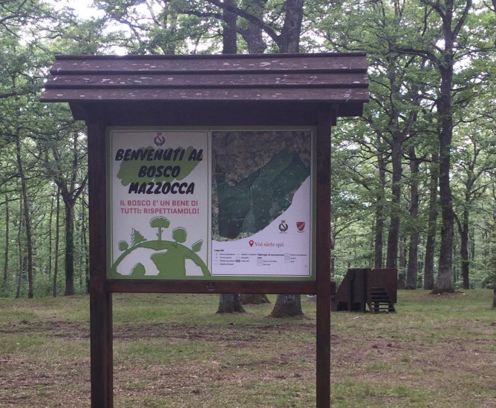 Bosco Mazzocca, il Comune di Riccia: «Il nostro patrimonio di biodiversità»