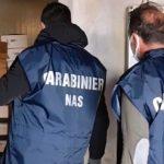 Cliente senza green pass, il Nas chiude un bar a Petrella: multato pure il titolare