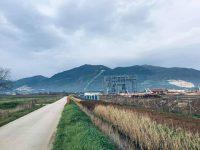 Con la transizione ecologica stop alla turbogas, petizione boom: centinaia di firme