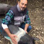 Storie di resistenza: Rocco e i suoi 70 maialini salvati solo grazie alla solidarietà