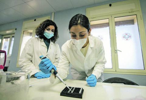 DIFESA: IL DIPARTIMENTO SCIENTIFICO MILITARE DEL CELIO HA SEQUENZIATO IL VIRUS DI UN SOGGETTO POSITIVO CON STESSA VARIANTE RISCONTRATA IN GRAN BRETAGNA